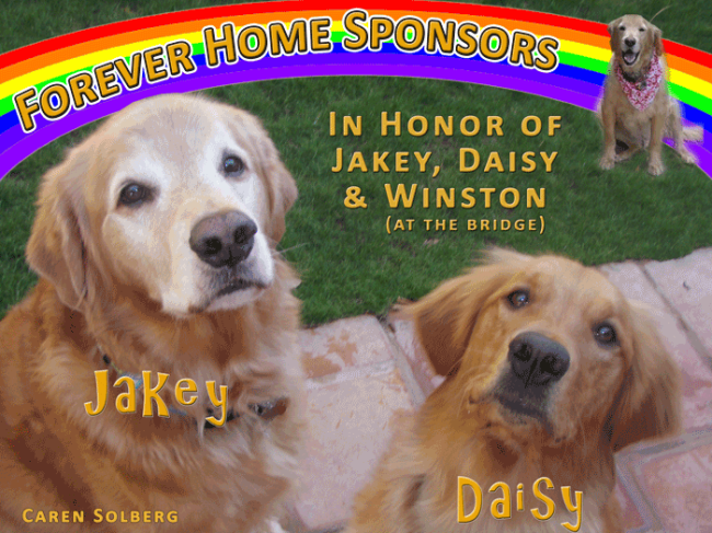 Jakey and Daisy--Caren Solberg
