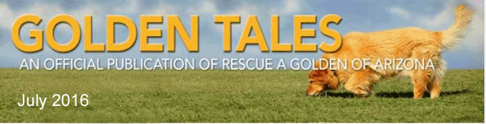 golden tales masthead july 2016