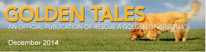 Golden Tales Masthead Dec 2014