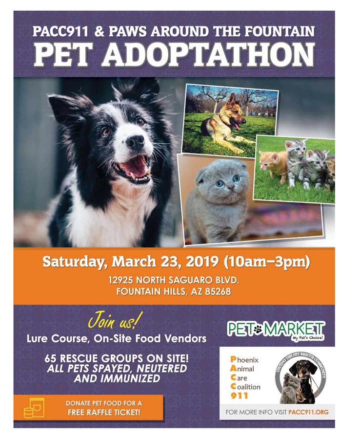 PACC911Paws Around Fountain march 23 2019