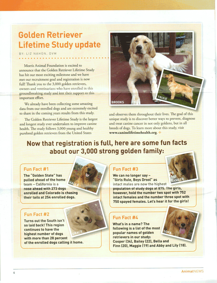 Golden Retriever Lifetime Study update