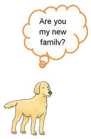 are you my new family1