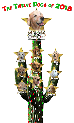 REVISED RAGofAZ 12 Dogs of Christmas Day 10