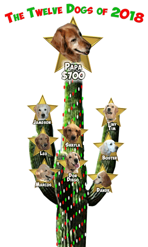 REVISED RAGofAZ 12 Dogs of Christmas Day 9