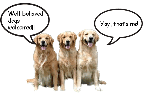 3 goldens speech behaved copy