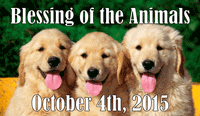 Blessing of the Animals1