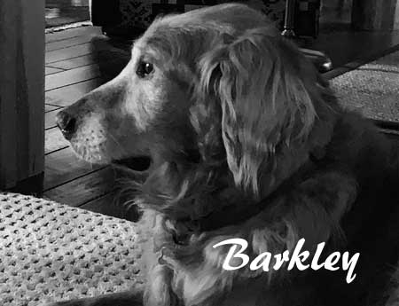 08_August-Barkley-450.jpg