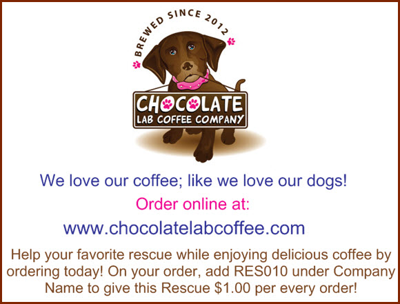 ChocolateLabCoffeeRES010a