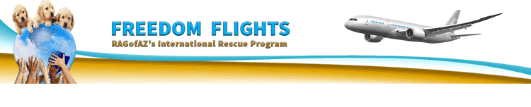 International Rescue Banner Freedom FLight teddy