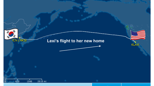 Lexi flight