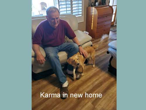 Karma-19-035-in-new-home4.jpg