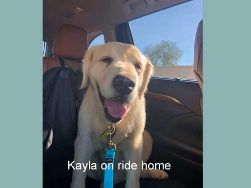 Kayla-19-038-on-ride-home.jpg