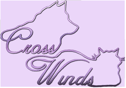 Cross Winds Logo Purple