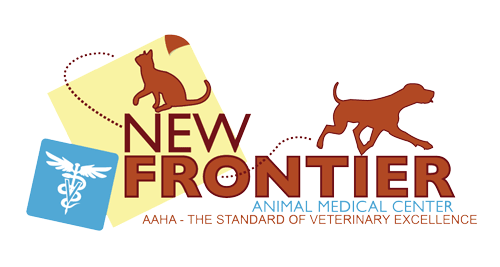 New Frontier AMC logo
