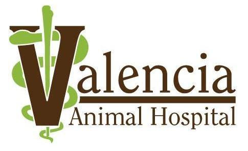 Valencia Logo Colored