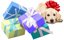 gift wrap2 puppy bow
