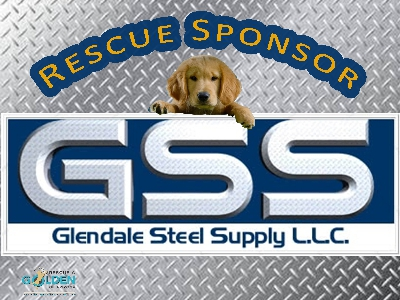 GSS Rescue Sponsor Sign resized