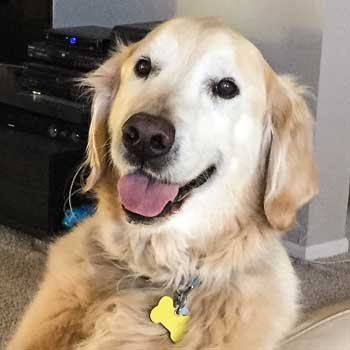 Scooter smile for memorial page
