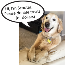 Scooter smile donate 225