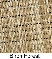 color-birch-fores225t