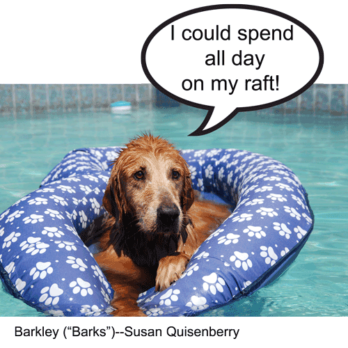 09-Barks_Susan-Quisenberry.png