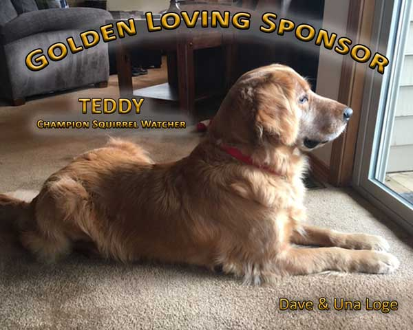 2019-Golden-Loving-Sponsor---Loge.jpg